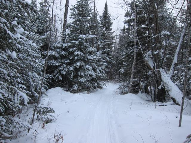 Little bit of Narnia